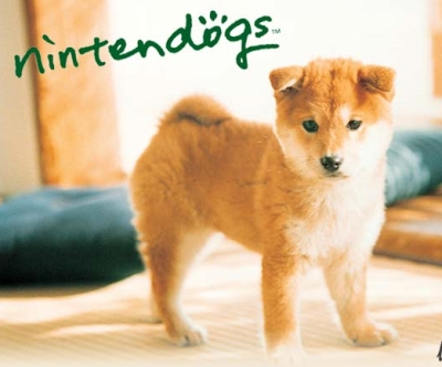 How Many Tricks Can A Dog Learn In Nintendogs