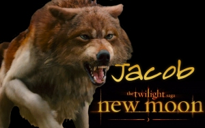 New_Moon_Wallpaper___Jacob_by_michaelkuttler