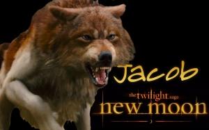 New_Moon_Wallpaper___Jacob_by_michaelkuttler