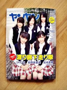 ヤ ンヤ ン vol. 11 (MARCH 2010)